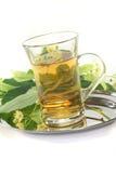 Linden flower tea Stock Photos