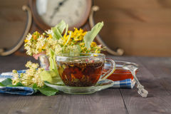 Linden flowers, herbal medicine royalty free stock photo