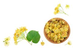 Linden flowers with leaf in wooden bowl isolated on white background with copy space for your text. Top view. Flat lay. Linden flowers with leaf in wooden bowl stock photo