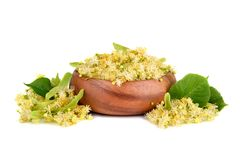 Linden flowers in plate Royalty Free Stock Images