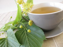 Linden flowers tea. Cuo of linden flowers tea royalty free stock photography