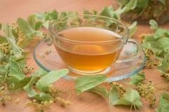 Linden Green Tea in tazza trasparente Fotografia Stock Libera da Diritti