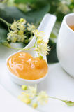 Linden honey Stock Photo
