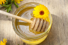 Linden honey in jar and calendula blossoms on wooden table Stock Images