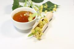 Linden honey nectar Stock Image