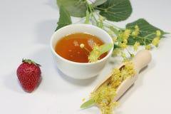 Linden honey nectar Stock Photos
