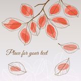 Linden leaf red style with place for your text Royalty Free Stock Image