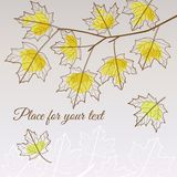 Linden leaf yellow style with place for your text Royalty Free Stock Images