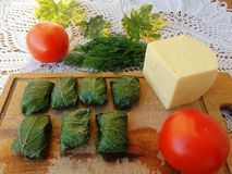 Linden leaves stuffed cheese tomatoes dill. Cooking vegetarian healthy food with wild plants delicious royalty free stock photography