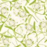 Linden seamless background. Blossoming aromatic linden summer flowers seamless background vector illustration Stock Photography