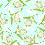 Linden seamless pattern Royalty Free Stock Images