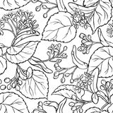 Linden seamless pattern. Linden branches seamless pattern on white background Stock Photo