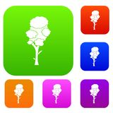 Linden set collection. Linden set icon in different colors isolated vector illustration. Premium collection Stock Photos