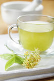 Linden tea. In a glass cup Stock Image