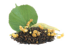 Linden tea Royalty Free Stock Image