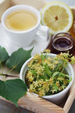 Linden tea. Cup of tea and linden flowers - tea time Royalty Free Stock Image
