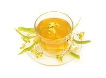 Linden tea Stock Images