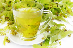 Linden Tea Lizenzfreies Stockbild