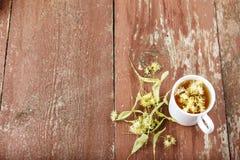 Linden tea in a cup. Top view stock photos