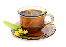 Linden tea with flower isolated on white background. Linden tea with flower. Isolated on white background royalty free stock images