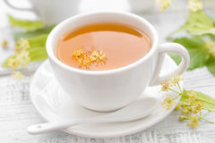 Linden tea Stock Photography