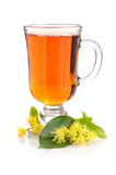 Linden tea Stock Image