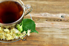 Linden tea. Tilia. Royalty Free Stock Images
