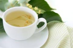 Linden tea Royalty Free Stock Photos