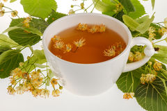 Linden tree flower tea Royalty Free Stock Photo