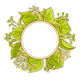 Linden vector frame. Linden branches vector frame on white background Stock Photo