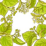 Linden vector frame. Linden branches vector frame on white background Royalty Free Stock Image