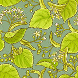 Linden vector pattern. Linden vector seamless pattern on color background Royalty Free Stock Photo
