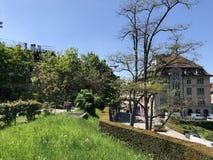 Lindenhof - geschiedenis-Getrokken oase in het hart van de stad van Zürich stock afbeeldingen