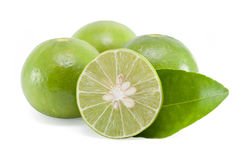 Lindgrüne Zitrone Lizenzfreie Stockfotos