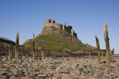 lindisfarne гавани замока шлюпок Стоковое фото RF