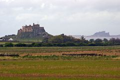 Lindisfarne and Bamburgh Castle Royalty Free Stock Photo