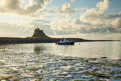 Lindisfarne Castle, Holy Island. Northumberland. England.UK. Lindisfarne Castle, Holy Island, Northumberland, England, early morning just after sunrise Stock Photos