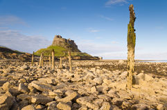 Lindisfarne Castle & Stakes Stock Image