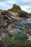 LINDISFARNE-SLOTT, HELGEDOM ISLAND/NORTHUMBERLAND - AUGUSTI 16: Tävla Royaltyfria Bilder