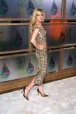 Lindsay Lohan Royalty Free Stock Image