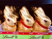 Lindt gold bunny stock photography