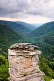 Lindy Point Blackwater Canyon Vertical-het Westen VA Stock Afbeeldingen