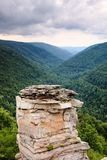 Lindy Point Blackwater Canyon Vertical West-VA Stockbilder