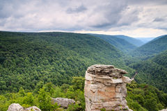 Lindy Point Blackwater Canyon West Virginia royaltyfri fotografi