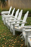 Line of Adirondack chairs covered with Fall leaves Royalty Free Stock Images