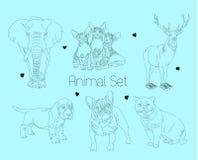 Line animal set Stock Image