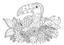 Line art design of Toucan bird sitting on branch for adult coloring book page.Black and white  illustration Royalty Free Stock Image