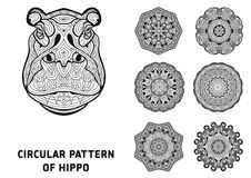 Line art. Element for your design. The head of a Hippo Royalty Free Stock Photos