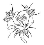Line art flowers, roses and peonies Royalty Free Stock Photos