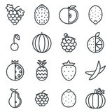 Line art fruit icons set flat design   isolated vector illustration Stock Photo